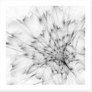 Black and White Art Print 122147359