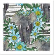 Passion flower elephant