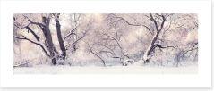 Soft snow branches Art Print 128794197