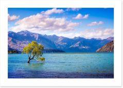 New Zealand Art Print 138126835