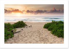 Beaches Art Print 141196974