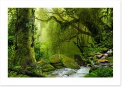 Forests Art Print 141618773
