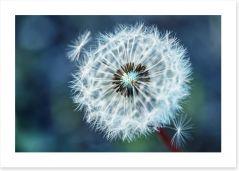 Dreamy dandelion Art Print 152685868