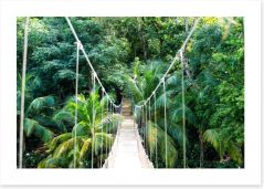 Forests Art Print 167948853