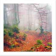 Forests Art Print 171084384
