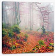 Forests Stretched Canvas 171084384