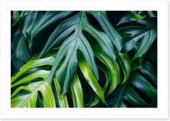 Leaves Art Print 171150703