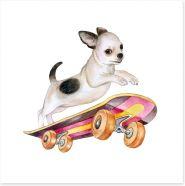 Skateboard chihuahua Art Print 172724272