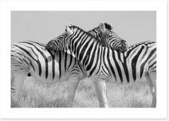 Black and White Art Print 184408659