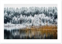 Winter Art Print 188755439