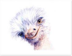 Birds Art Print 191742321