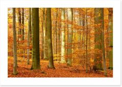 Autumn Art Print 196763513