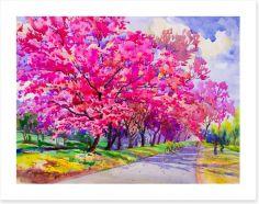 Cherry blossom path Art Print 197578145