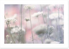 Flowers Art Print 201987223