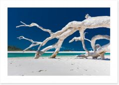 Beaches Art Print 203519903