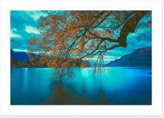 New Zealand Art Print 205019994