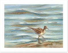 Watercolour Art Print 215654192