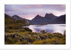 Tasmania Art Print 23622721