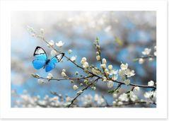 Butterflies Art Print 245208217