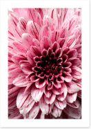 Flowers Art Print 257921349