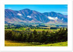 New Zealand Art Print 270584283