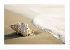 Beaches Art Print 2985024