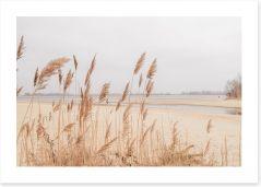 Winter Art Print 323801072