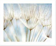 Make a wish Art Print 32821180