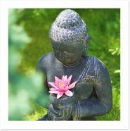 Pink lily buddha