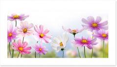 Pink flower panoramic Art Print 49007490