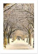 Winter pathway Art Print 49292793