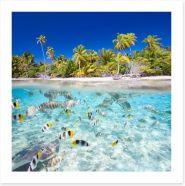Tropical island paradise Art Print 53128524