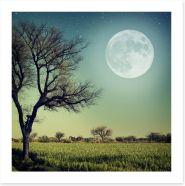 Moon glow Art Print 54798232