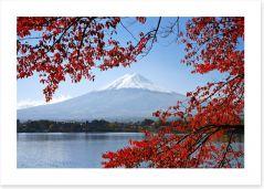 Mt. Fuji in the Autumn Art Print 55179380