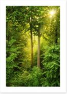 Green forest sunbeam Art Print 56243360