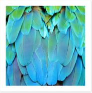 Harlequin macaw feathers Art Print 56692337