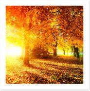Autumn leaves in sunlight rays