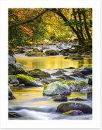 Rivers Art Print 58263833