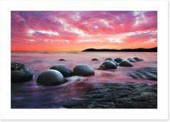 Moeraki boulders at dusk Art Print 60516353