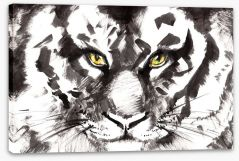 Eyes of a tiger Stretched Canvas 60851248