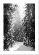 Between the fir trees Art Print 61820410