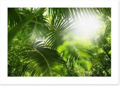 Lush green rainforest Art Print 63974443