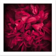 Peony petals Art Print 65021905