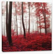 Glowing Autumn forest Stretched Canvas 69017147
