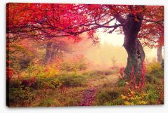 Autumn Stretched Canvas 70214313