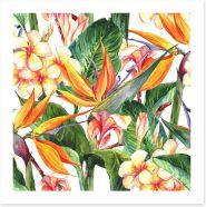Exotic hibiscus leaves