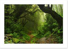 Amazon jungle Art Print 74532471