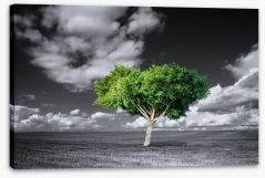The green tree Stretched Canvas 75661317