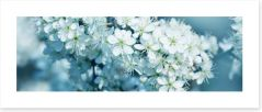 Fresh blossom panorama Art Print 81205012