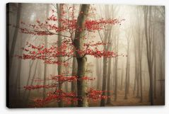 Last Autumn leaves Stretched Canvas 89851738